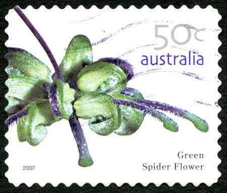 AUSTRALIA - CIRCA 2005: A used postage stamp from Australia, depicting an image of a Green Spider Flower, circa 2005. Editorial