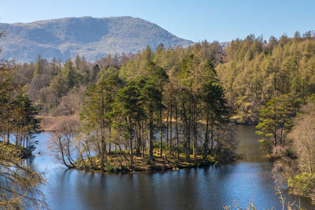 northwest: The picturesque scenery of Tarn Hows in the Lake District in Cumbria, UK.