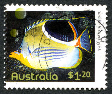 AUSTRALIA - CIRCA 2010: A used postage stamp from Australia, depicting an image of a Saddle Butterflyfish, circa 2010.