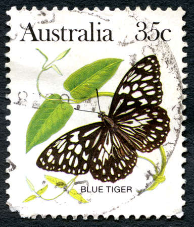 AUSTRALIA - CIRCA 1983: A used postage stamp from Australia, depicting an illustration of a Blue Tiger Buuterfly, circa 1983. Editorial
