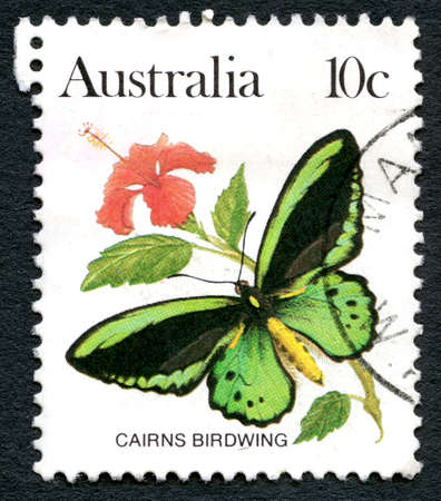 AUSTRALIA - CIRCA 1983: A used postage stamp from Australia, depicting an illustration of a Cairns Birdwing Butterfly, circa 1983.