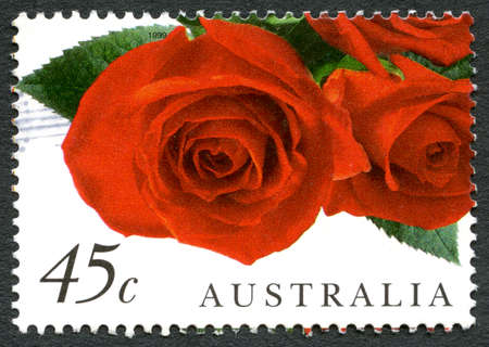AUSTRALIA - CIRCA 1999: A used postage stamp from Australia, depicting an image of red Roses, circa 1999.