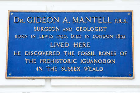 he: LEWES, UK - MAY 31ST 2017: A plaque marking the location where Dr. Gideon A. Mantell lived in Lewes, East Sussex, on 31st May 2017.  He discovered the fossil bones of the prehistoric Iguanodon.