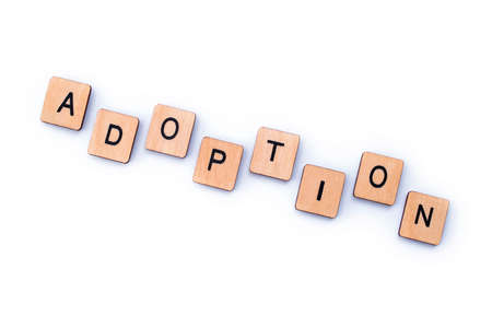 The word ADOPTION, spelt out with wooden letter tiles.