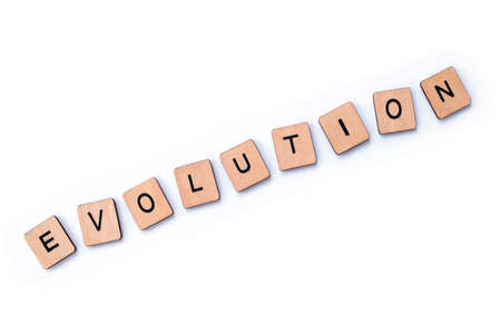 The word EVOLUTION, spelt with wooden letter tiles over a plain white background.