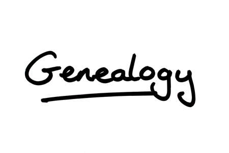 Genealogy handwritten on a white background. Standard-Bild