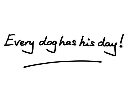 Every dog has his day! handwritten on a white background.
