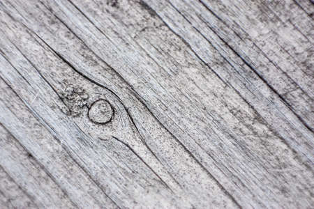 white and gray wood closeup texture
