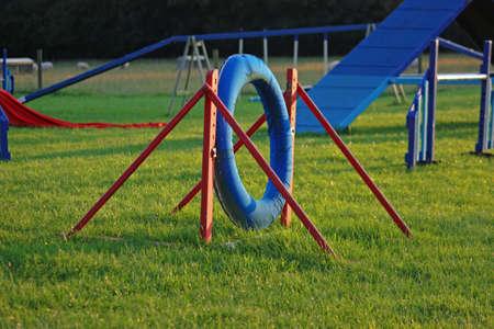 dog sport agility tyre equipment