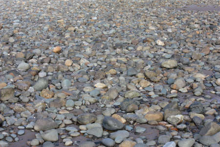 stones and roccks on a sandy beach background