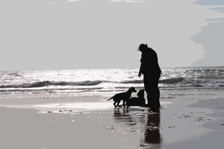 sandy: a person with two dogs on a glimmering sandy beach in sunshine