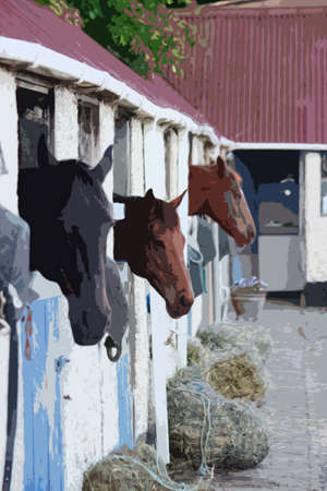 stable: horses in a stable