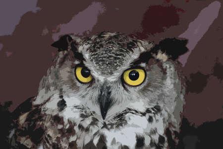 eagle owl: a magnificent eagle owl Illustration