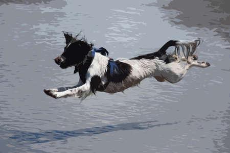puppydog: working type engish springer spaniel pet gundog jumping on a sandy beach Illustration