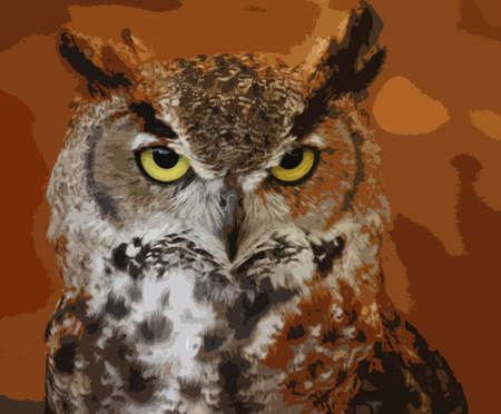 crowned: portrait of a crowned african eagle owl
