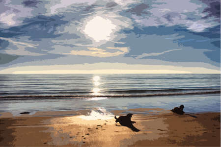 Working type springer spaniel pet gundog lying on a sandy beach at sunset Vector