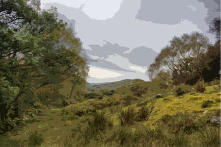 rural scene: Snowdonia national park rural countryside scene