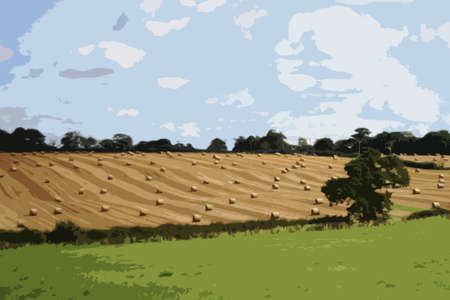 bales: large round bales in rural farmland