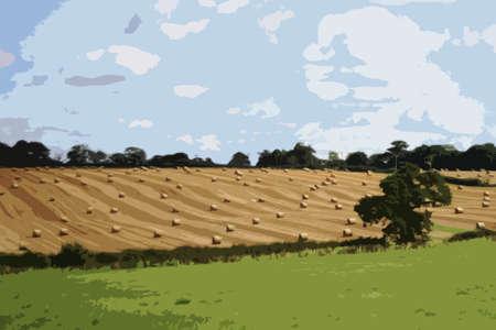 bála: nagy, kerek bálák a vidéki mezőgazdasági terület