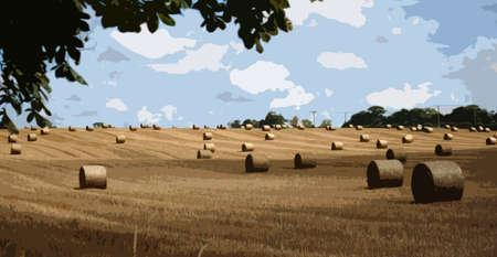 俵: 大規模な農村部の農地で俵ラウンド