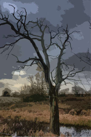 intimidating: dead tree silhouette against a dark grey cloudy sky Illustration