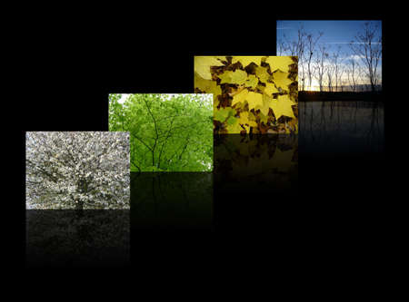 four seasons, including spring, summer, autumn (fall) and winter on a slick black background
