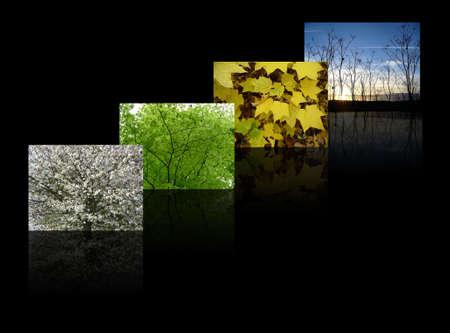quatre saisons: quatre saisons, y compris le printemps, �t�, automne (automne) et en hiver sur un fond noir slick Banque d'images