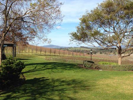 Yarra valley Victoria Australia.
