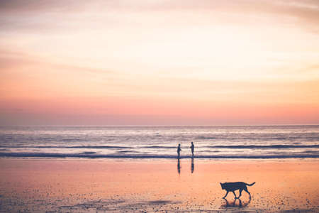 Sunset on the beach - Bright orange sunset, sand reflecting the colors, two people and a dog enjoying the scene. Stock Photo - 50157393