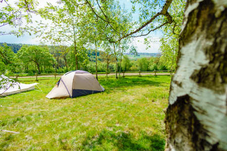 tent in the forest at summer Stock Photo