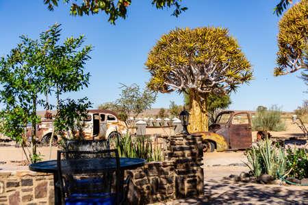 namibia roadhouse fishriver quivertree car