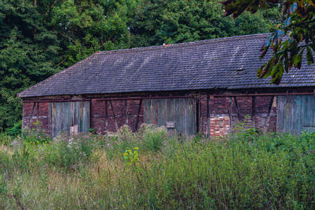 old weathered barn in field of green grass, pasture and trees