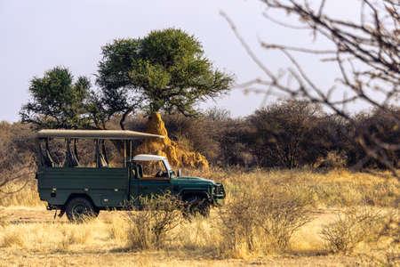 Die Wüste in der Nähe der Küstenstadt Swakopmund am Atlantik im südlichen Afrika Namibias mit rotem Sand und Felsen in einer spektakulären Landschaft und Vegetation von einem Geländewagen aus gesehen
