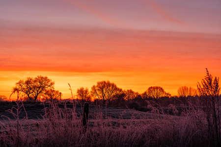 golden sunrise winter trees field morning landscape