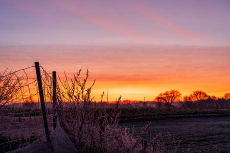 fence farm sunrise morning landscape Zdjęcie Seryjne
