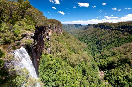 fitzroy: This image shows Fitzroy Falls, in New South Wales, Australia Stock Photo