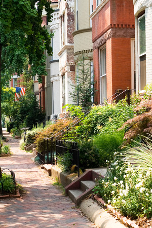 This image shows the Leafy DC Streets - Dupont Circle Area