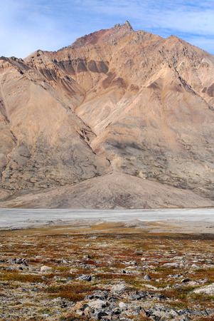 alluvial: This image shows an alluvial fan in North-East Greenland.