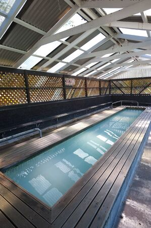geothermal: This image shows a geothermal swimming pool in Rotorua