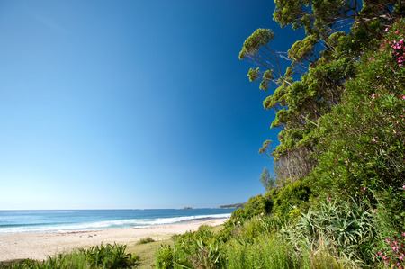 south coast: This image shows a tropical beach on New South Wales South Coast, Australia