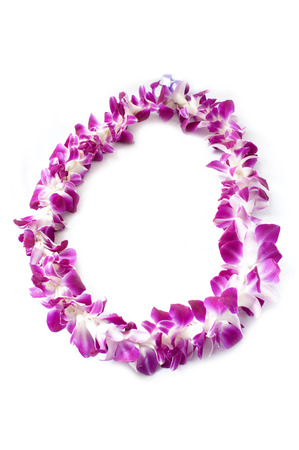 This image shwos a Hawaiian lei made of large orchid blooms Stock Photo