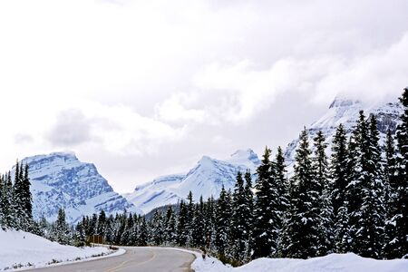 icefield: This image was taken along the Icefield Parkway in Alberta, Canada.