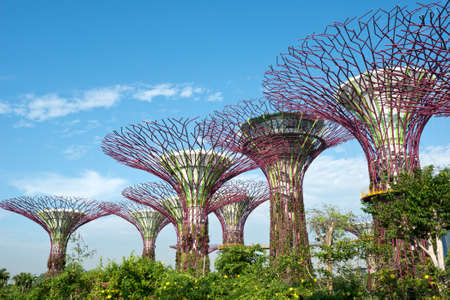 bay: Gardens by the Bay, Singapore