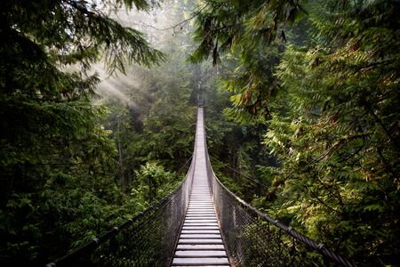 This image shows a Suspension Bridge in North Vancouver, Canada