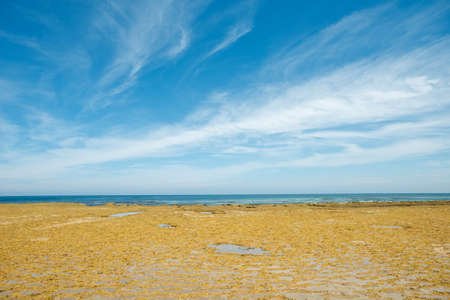 lonsdale: This image shows the landscape of Point Lonsdale in  Victoria, Australia.