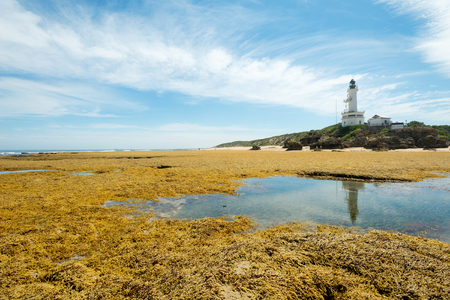 lonsdale: This image shows a lighthouse at Point Lonsdale in Victoria, Australia.