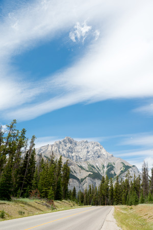 canadian rockies: This image shows the landscape of the Canadian Rockies.
