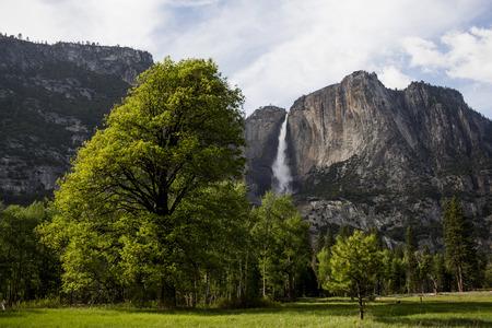 Yosemite Falls von Yosemite Valley Standard-Bild - 38471402