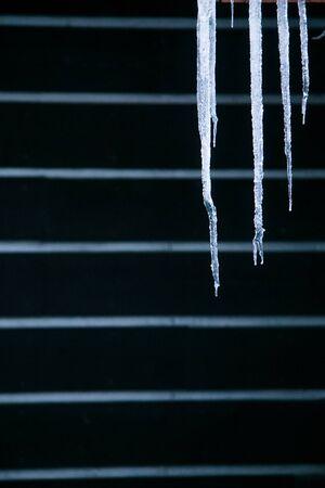 frigid: Icicles against black background