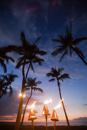 Fire coming out of Hawaiian tiki torches with palm trees
